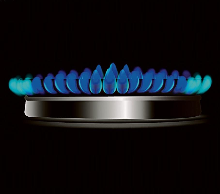 Dujų tiekimą druskininkiečiams užtikrins skirstymo sistemos operatorius ESO