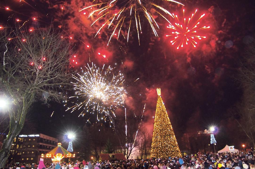Druskininkuose atidarytas Kalėdinių eglučių parkas, įžiebta didžioji Kalėdų eglė ir įrengta prakartėlė