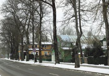 Atnaujinami Druskininkų miesto želdynai