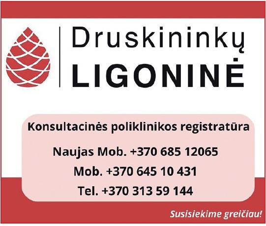 siulo darba druskininkuose)